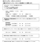 1女性の安全安心調査質問用紙(確定)のサムネイル